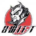 Swift Performance Auto