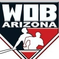 Arizona World of Baseball