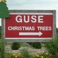 Guse Christmas Trees