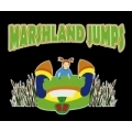 Marshland Jumps