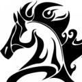 Whispering Farms Equestrian Center LLC