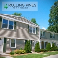 Rolling Pines