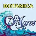 Botanica 7 Mares