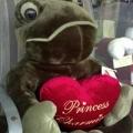Fancy Frog Thriftique Mall