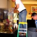 Aquarius Aquarium Services