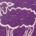 Woolly Lamb Yarn Studio