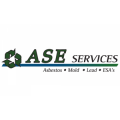 ASE Services Inc