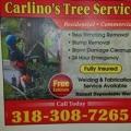 Carlino's Tree Service