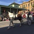 Island Carriages