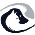 Veterinary Eye Institute