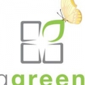 Living Green Now