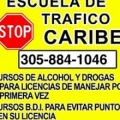 Caribe Traffic School