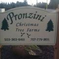 Pronzini Christmas Tree Farms