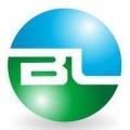 Blueline Services