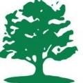 Davey Tree Service: South Bay, CA Office
