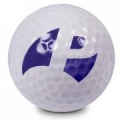 Pinemeadow Golf Products Inc