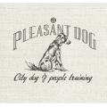 A Pleasant Dog