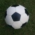 Soccer Post Pottstown