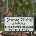 Forest Hills Landscaping and Tree Farm